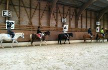 Atelier équitation de l'ESA