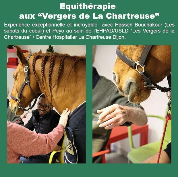 Equithérapie aux Vergers de La Chartreuse