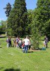 Des arbres offerts par le Rotary Club