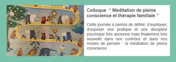 Colloque  » Méditation de pleine conscience et thérapie familiale «