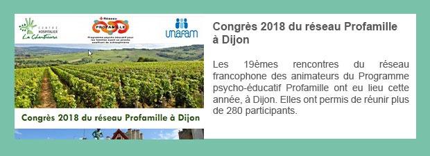 Congrès 2018 du réseau Profamille à Dijon
